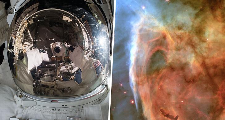Rymden, resa, jorden, astronaout
